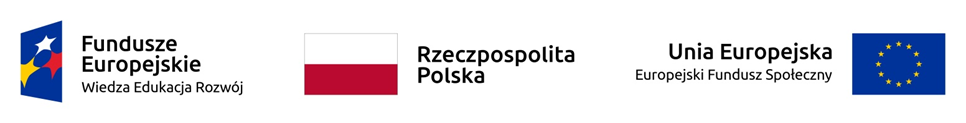 logotyp FE